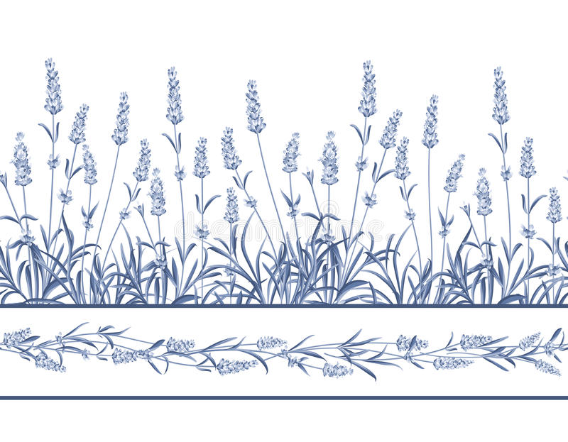 Lawendowa Bezszwowa ramowa linia ilustracji