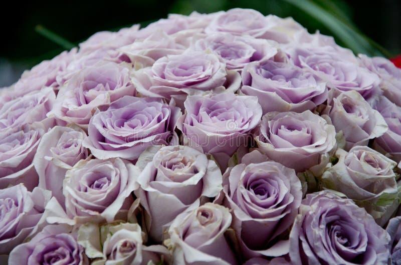 Lawendowi róży centerpiece kwiaty obraz stock