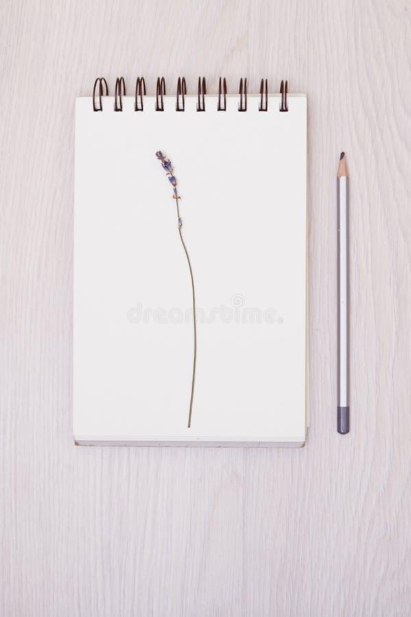 Lawendowy biurko projekt z kwiatami na białym tło odgórnego widoku egzaminie próbnym up zdjęcia stock