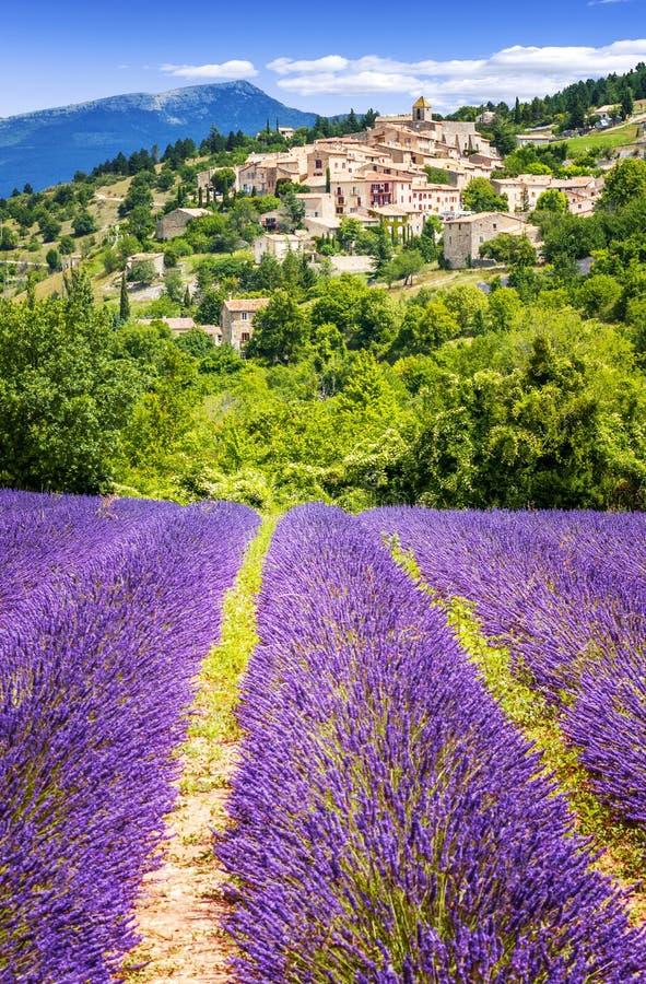 Lawendy pole i wioska, Francja fotografia royalty free