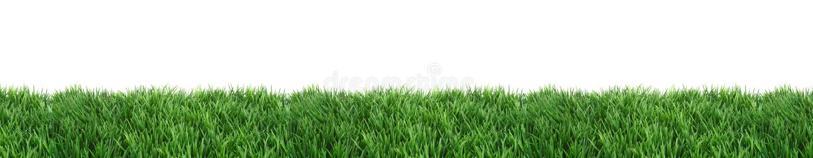 Download Lawn stock photo. Image of lawn, horizontal, natural - 14106144