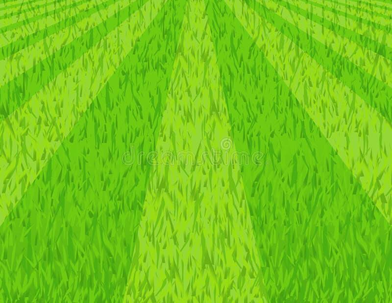 Lawn. Illustration,AI file included stock illustration