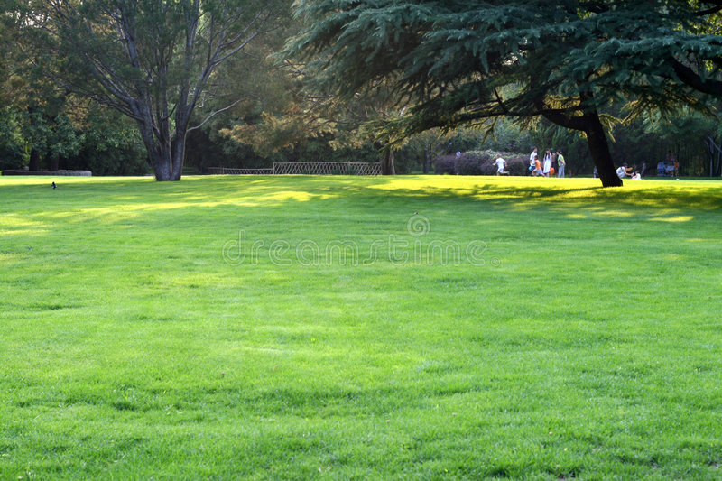 Download Lawn stock photo. Image of trees, nature, colorful, beijing - 4358360