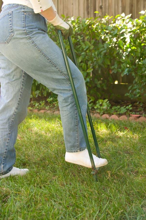 Lawn aerating stock photo