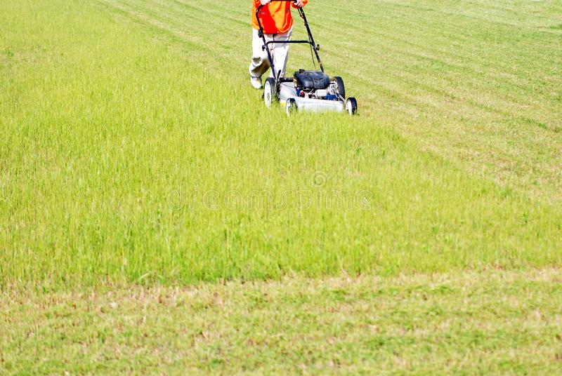 Download Lawn care stock photo. Image of work, cutter, garden - 14800602