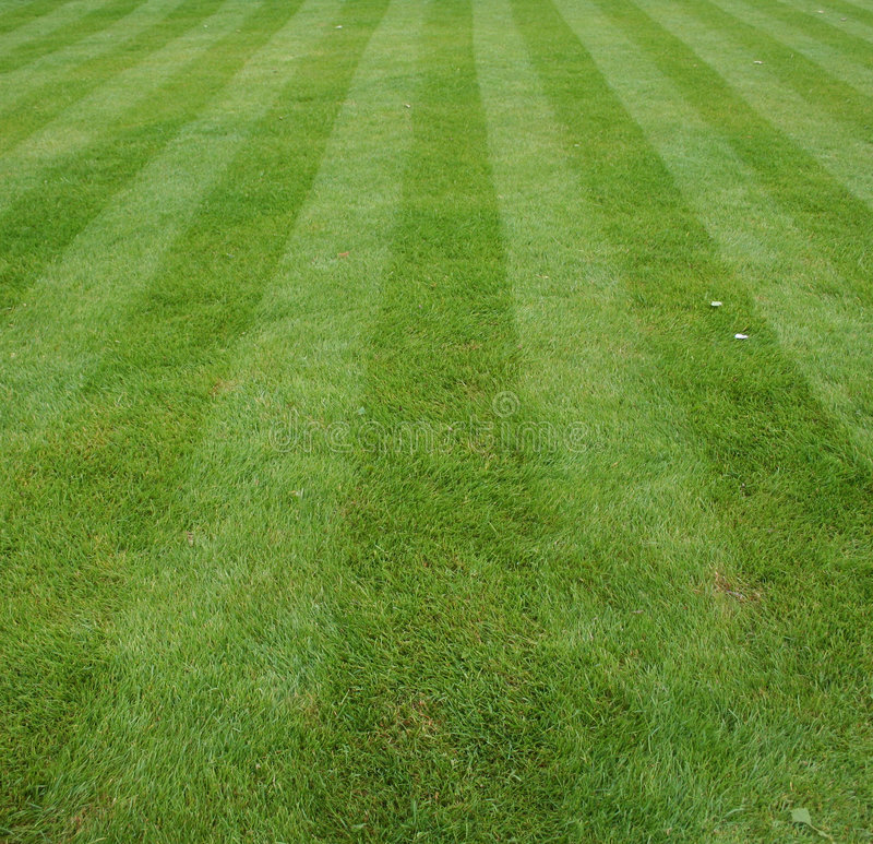 Lawn cut with stripes stock photo