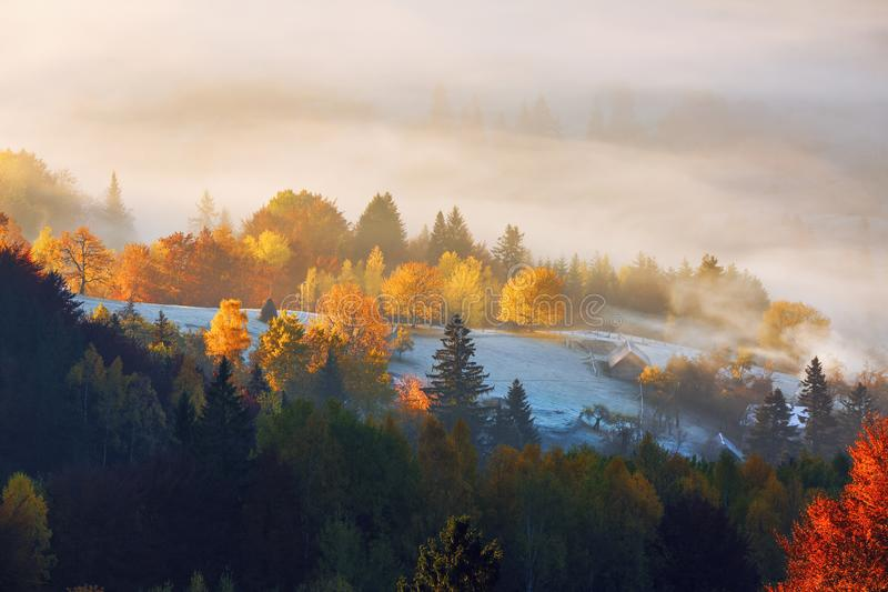 The lawn is enlightened by the sun rays. Majestic autumn rural landscape. Fantastic scenery with morning fog. Carpathians valley. The lawn is enlightened by the stock photo
