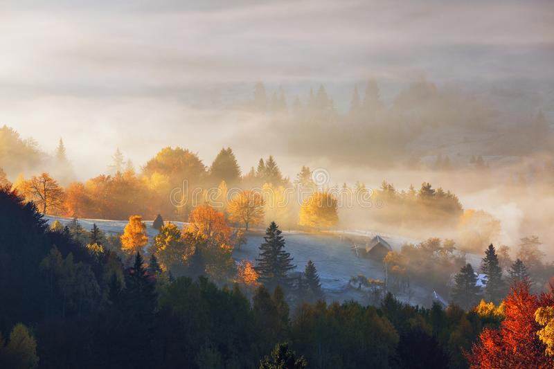 The lawn is enlightened by the sun rays. Majestic autumn rural landscape. Fantastic scenery with morning fog. Touristic place. The lawn is enlightened by the stock photos