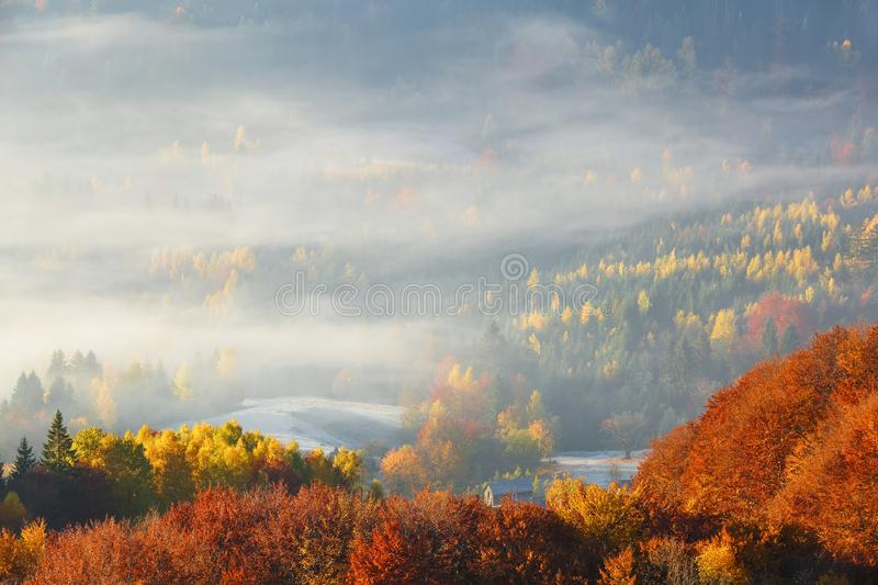The lawn is enlightened by the sun rays. Majestic autumn rural landscape. Fantastic scenery with morning fog. Touristic resort. The lawn is enlightened by the royalty free stock photos