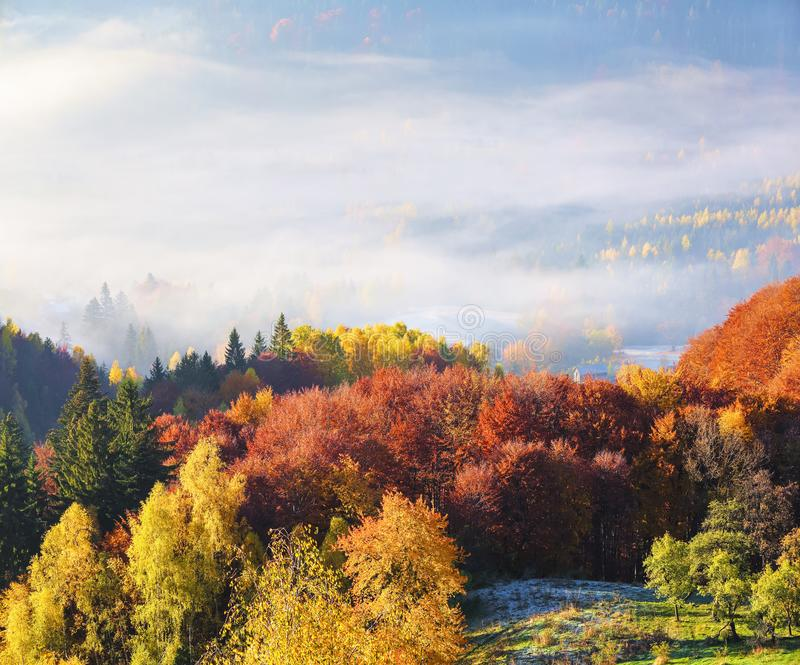The lawn is enlightened by the sun rays. Majestic autumn rural landscape. Fantastic scenery with morning fog. Touristic resort. The lawn is enlightened by the stock photography