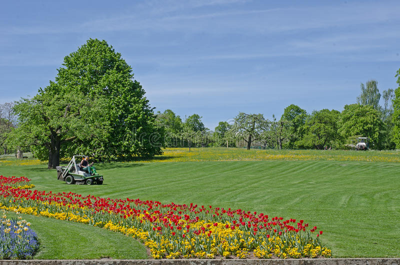 Lawn with flowers in the center of the Park stock photos