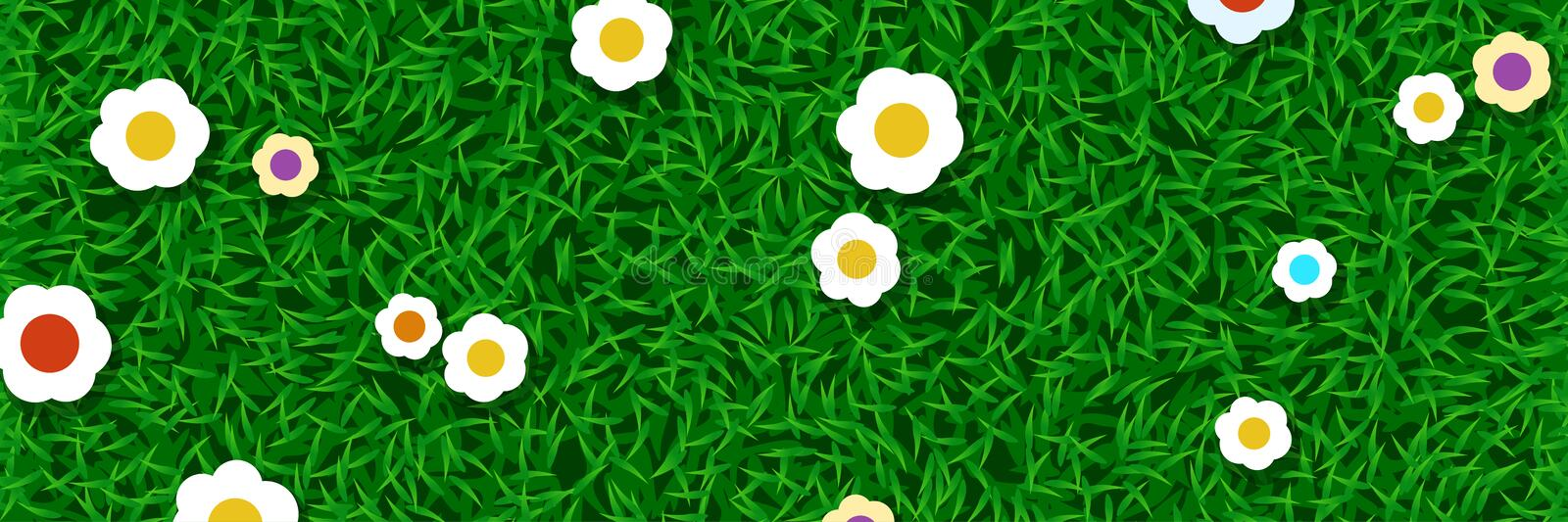 Lawn grass with flowers stock illustration
