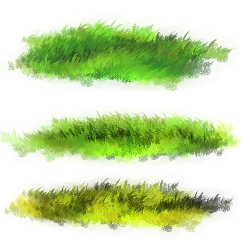 Lawn grass illustration. The illustration is made in Photoshop vector illustration
