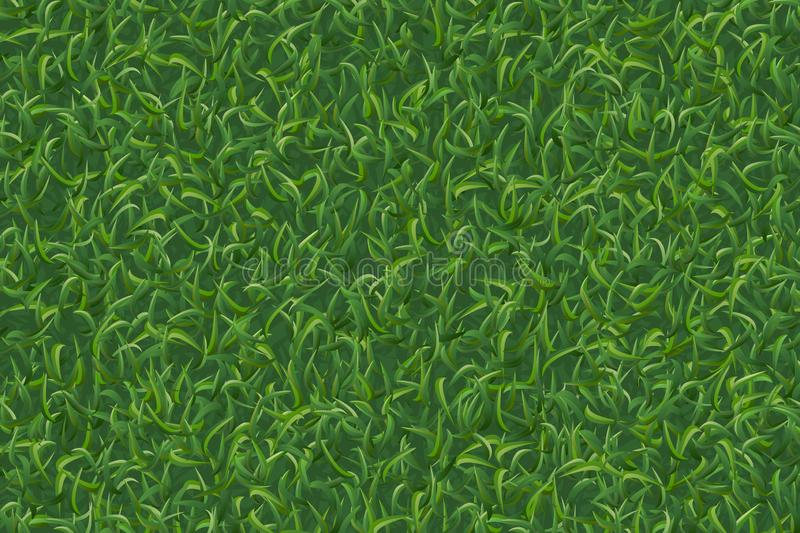 Lawn grass pattern and texture for background. Vector. Lawn grass pattern and texture for background. Vector illustration royalty free illustration