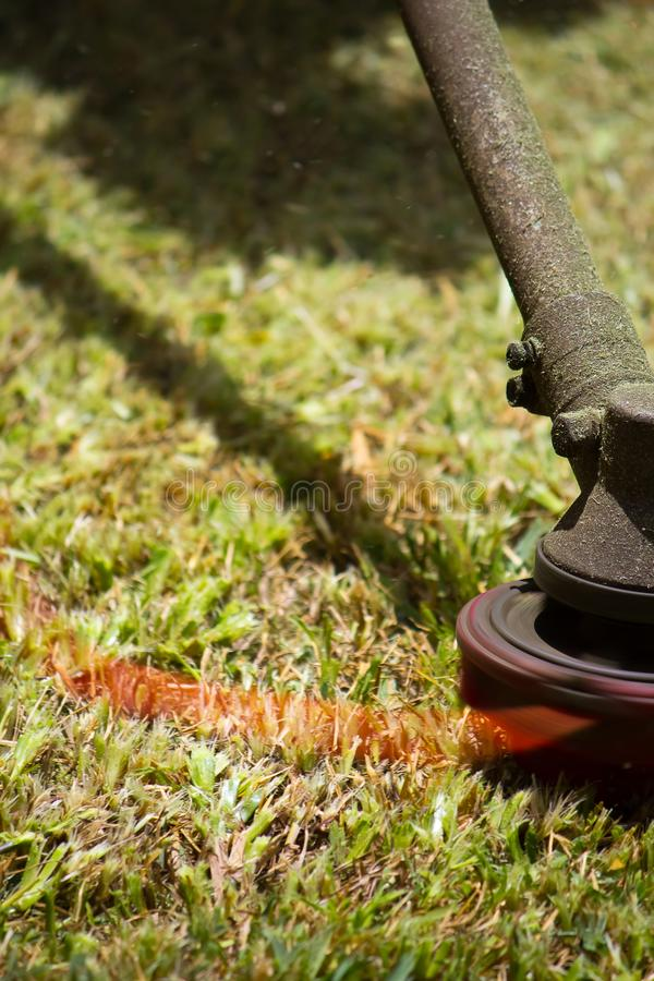 Mowing the Lawn. Lawn Mover in action closeup royalty free stock photo