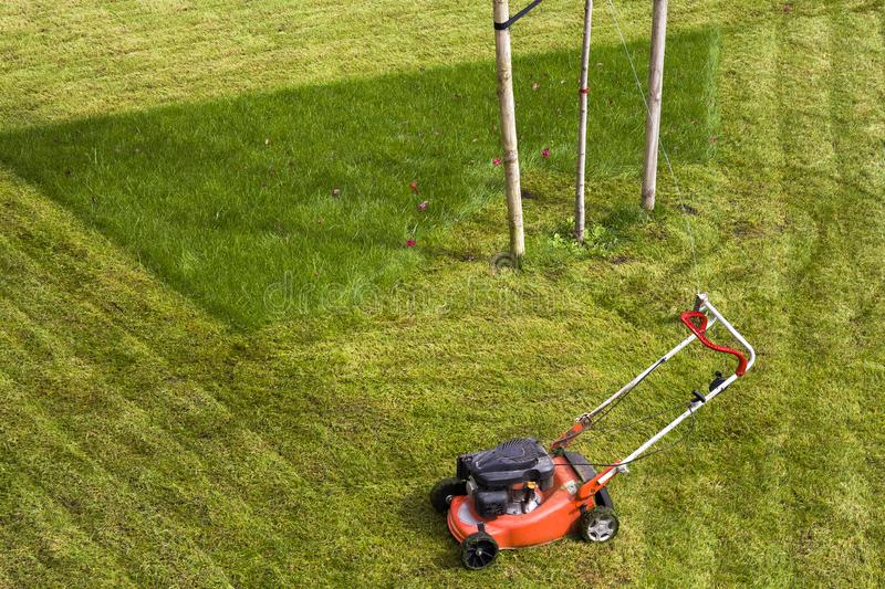 Lawn mower cutting grass on green field in yard. Mowing gardener care work tool royalty free stock image