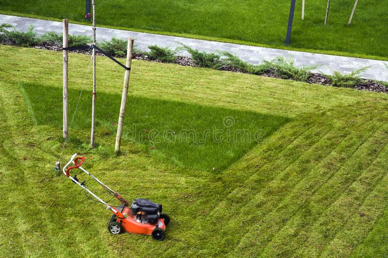 Lawn mower cutting grass on green field in yard. Mowing gardener care work tool stock images