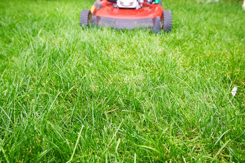 Lawn mower. stock images