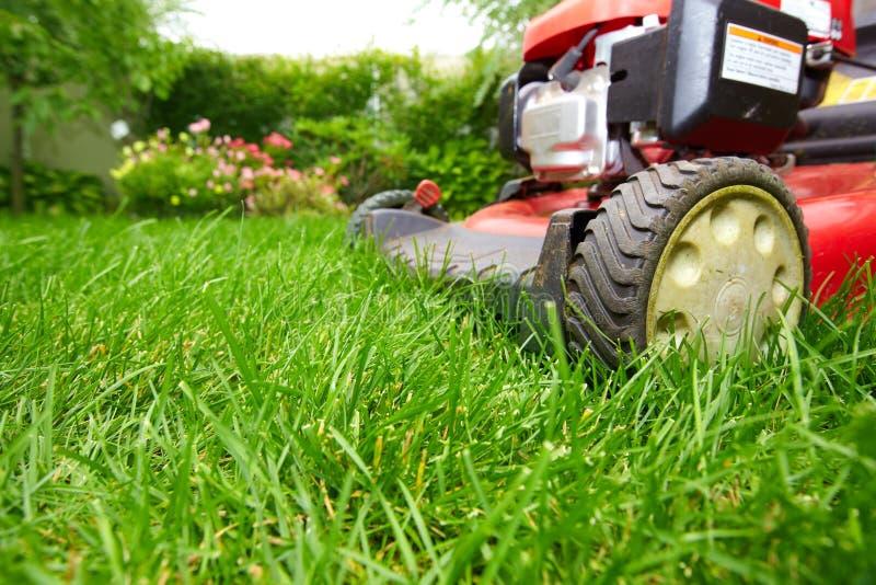 Lawn mower. royalty free stock photo