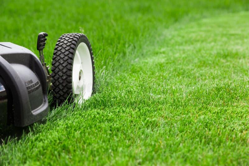 Lawn mower. Garden lawn mower cutting grass stock photo