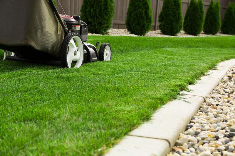 Lawn mower. Garden lawn mower cutting grass stock image