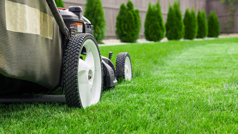 Lawn mower. Garden lawn mower cutting grass stock images