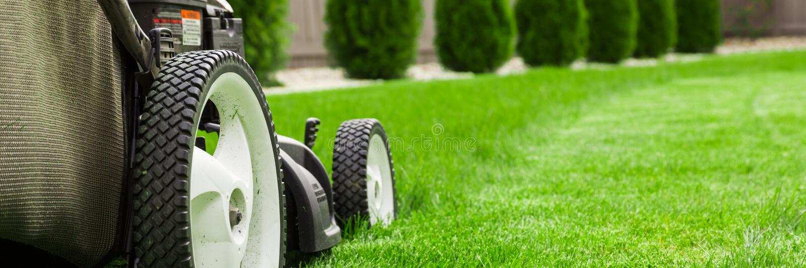 Lawn mower. On green lawn royalty free stock photography