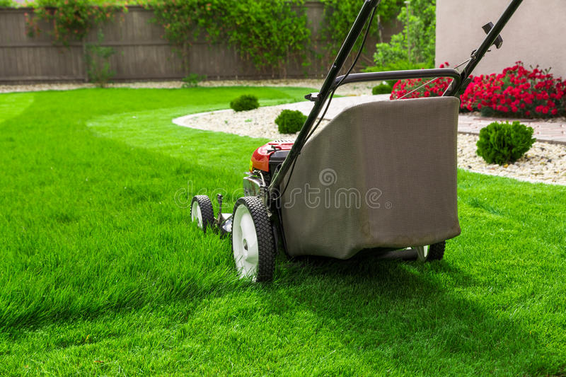 Lawn mower. On green grass stock images