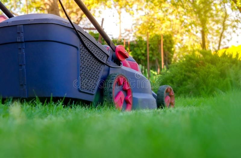 Lawn mower. Mows a grass on a lawn, care of a lawn royalty free stock photo