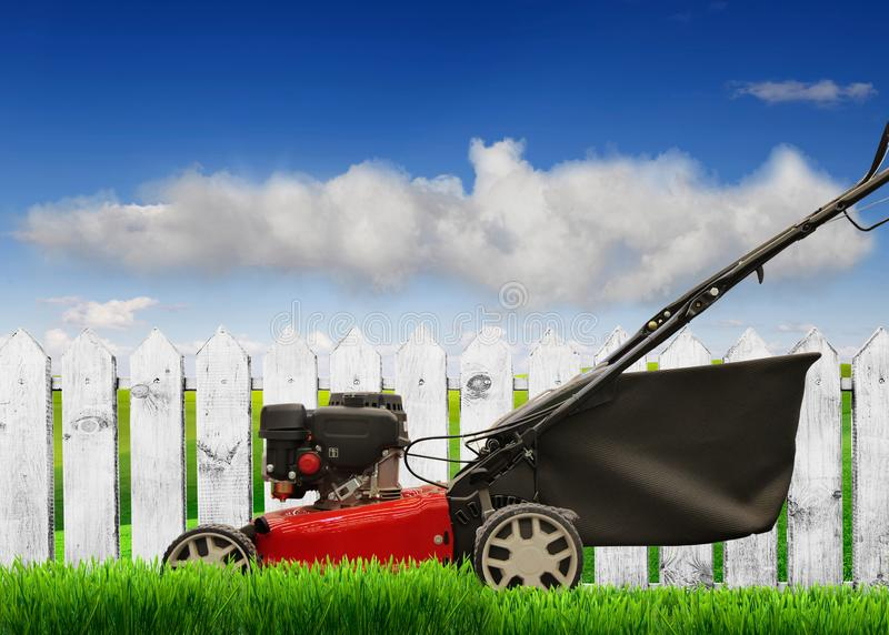 Lawn mower mows stock image