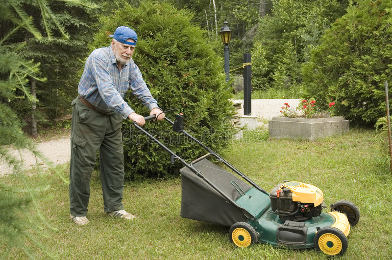 Download Lawn mowing stock image. Image of lawn, owner, clippings - 967867