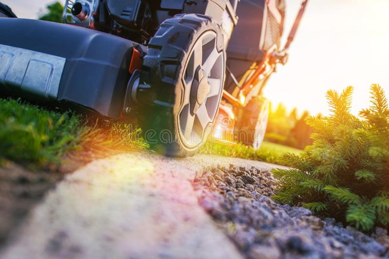 Lawn Mowing Closeup. Photo. Professional Landscaping Works. Grass Cut stock photo