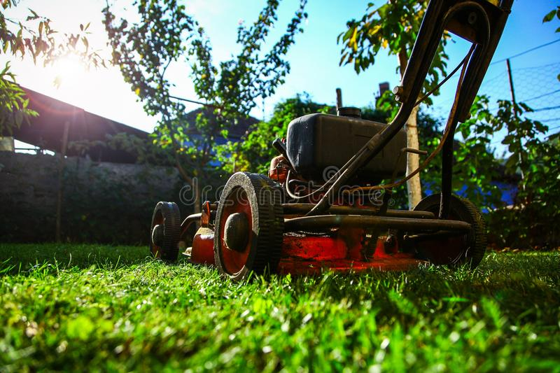 Lawn mowing - summer lawn mowing. Lawn mowing to cut a grass at my home. The farmer cuts grass in the yard stock photography