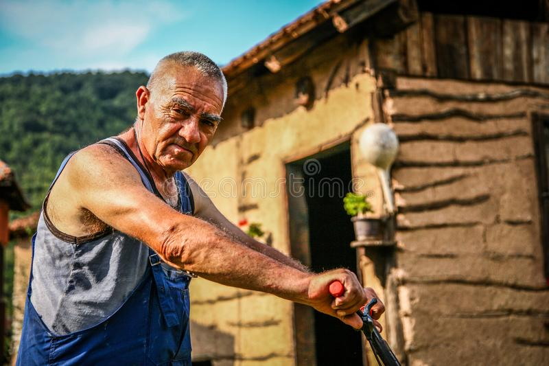 Lawn mowing - summer lawn mowing. Lawn mowing to cut a grass at my home. The farmer cuts grass in the yard stock photo