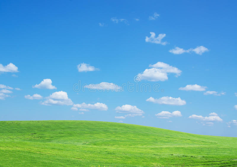 Download Lawn Sky Stock Image - Image: 25947571