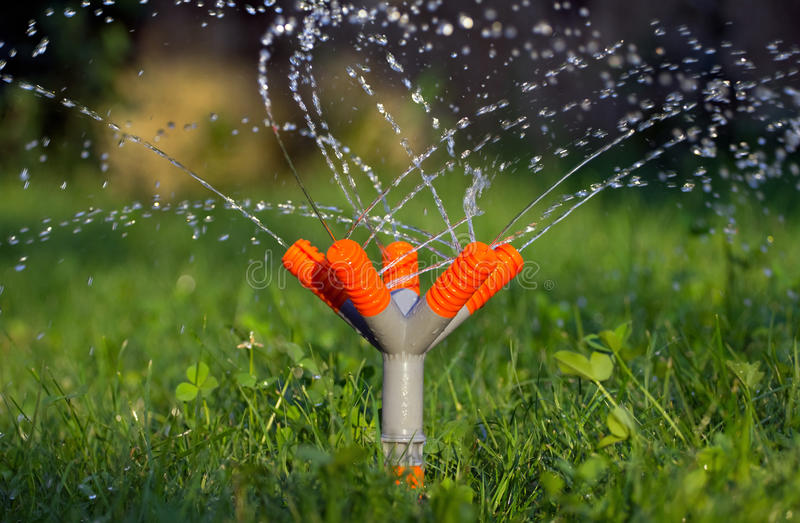 Lawn sprinkler. Irrigation grass system royalty free stock photography