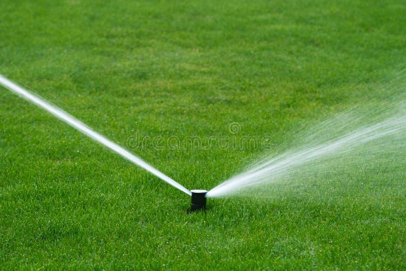 Lawn sprinkler spraying water. The lawn sprinkler spraying water royalty free stock photography
