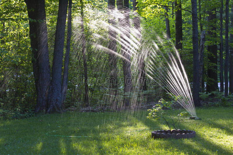 Lawn Sprinkler royalty free stock image