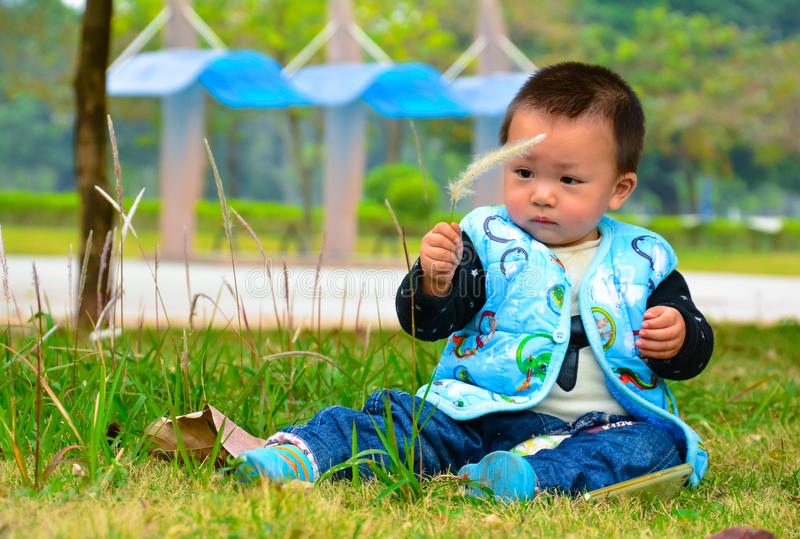 On the lawn to entertain the boy playing s.viridis. Parents don't every moment of every day to take care of their children, and to leave them alone, to entertain royalty free stock photos