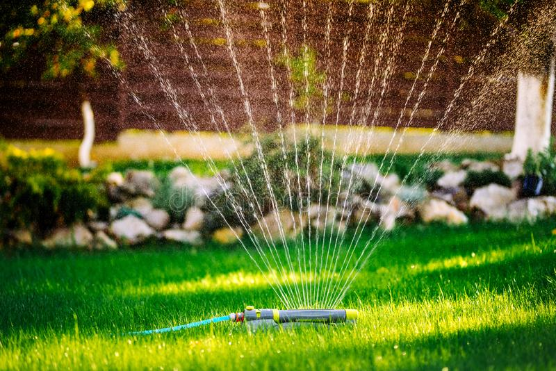 lawn watering system with circular sprinklers. Close up details of lawn maintenance royalty free stock photo