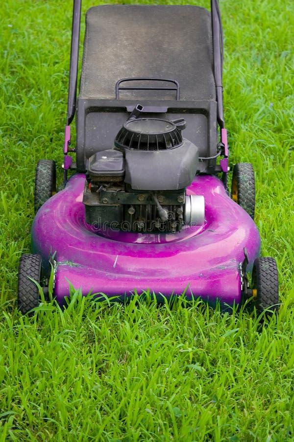 lawngräsklippningsmaskinpink arkivfoton