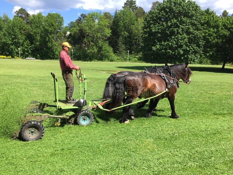 lawnmover à la force du cheval photos stock
