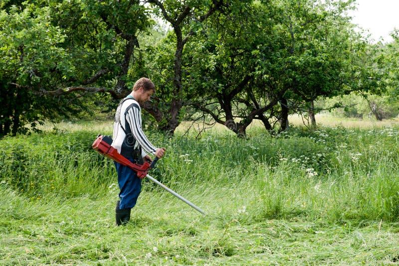 lawnmower obraz royalty free