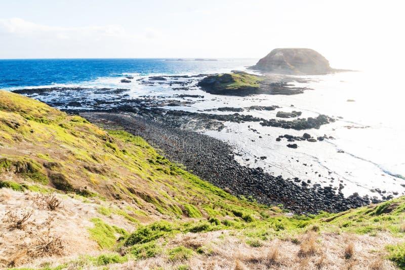 Lawy kamienna linia brzegowa i Round wyspa przy Nobbies przy Phillip wyspą, Wiktoria, Australia fotografia royalty free
