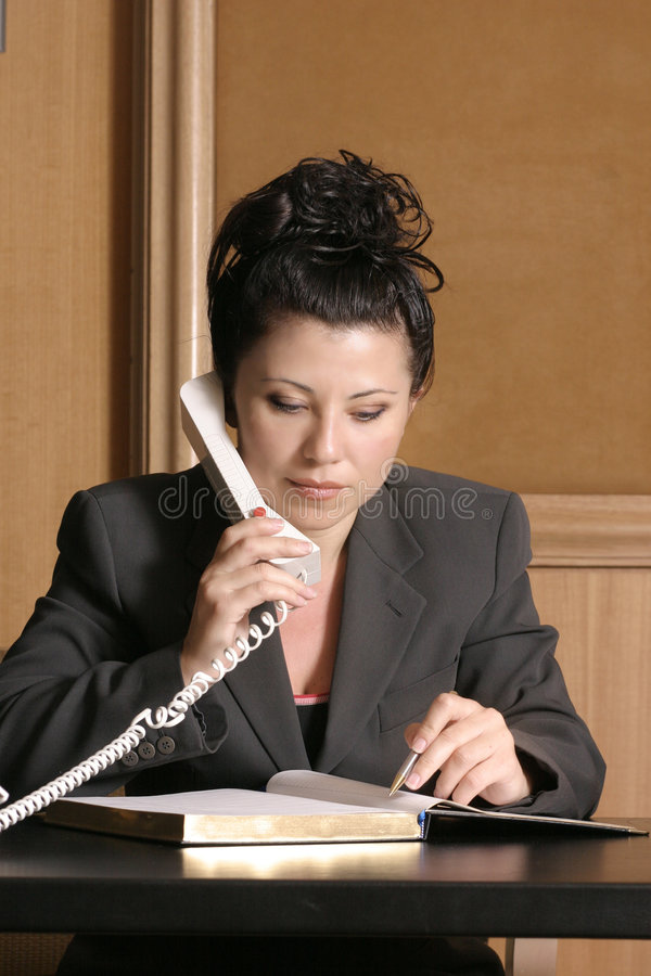 Lawyer or Business Professional royalty free stock image