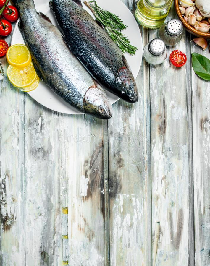 Lax för rå fisk med grönsaker, kryddor och aromatiska örter fotografering för bildbyråer