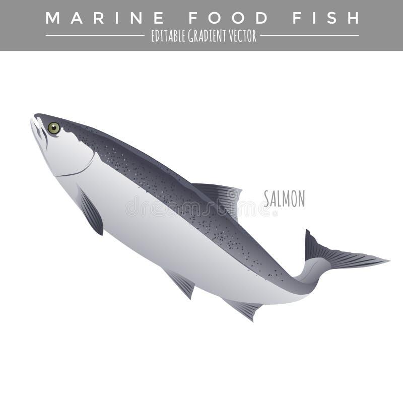Lax Marine Food Fish stock illustrationer