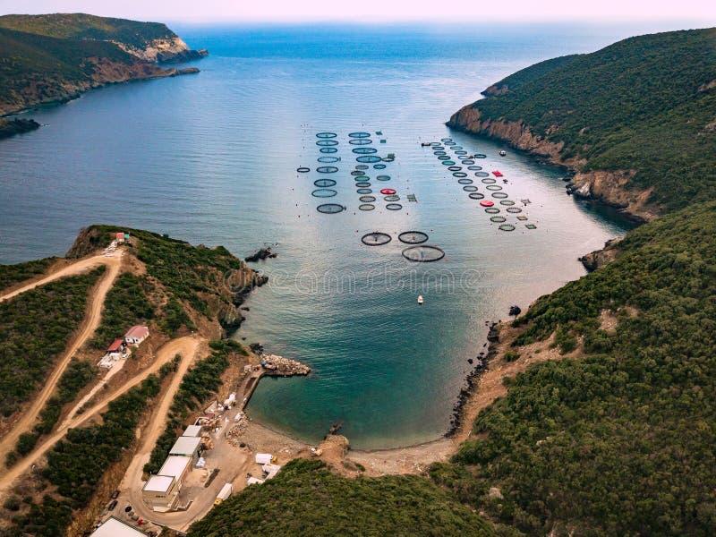 Laxfisklantgård med att sväva burar flyg- sikt royaltyfria bilder