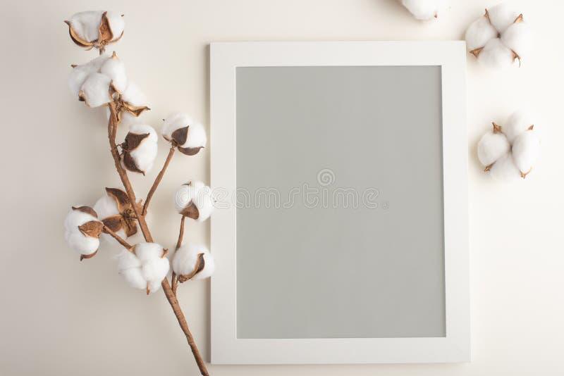 Lay-out van het kader in grijze neutrale kleur Voor ontwerp of het van letters voorzien op een lichte achtergrond Model stock afbeeldingen