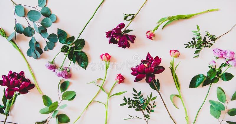 Lay różnorodny lato kwitnie nad różowym tłem zdjęcia stock